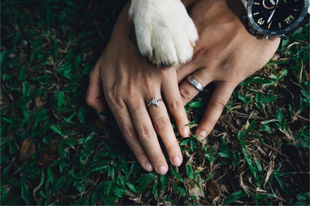 wedding dogs paw